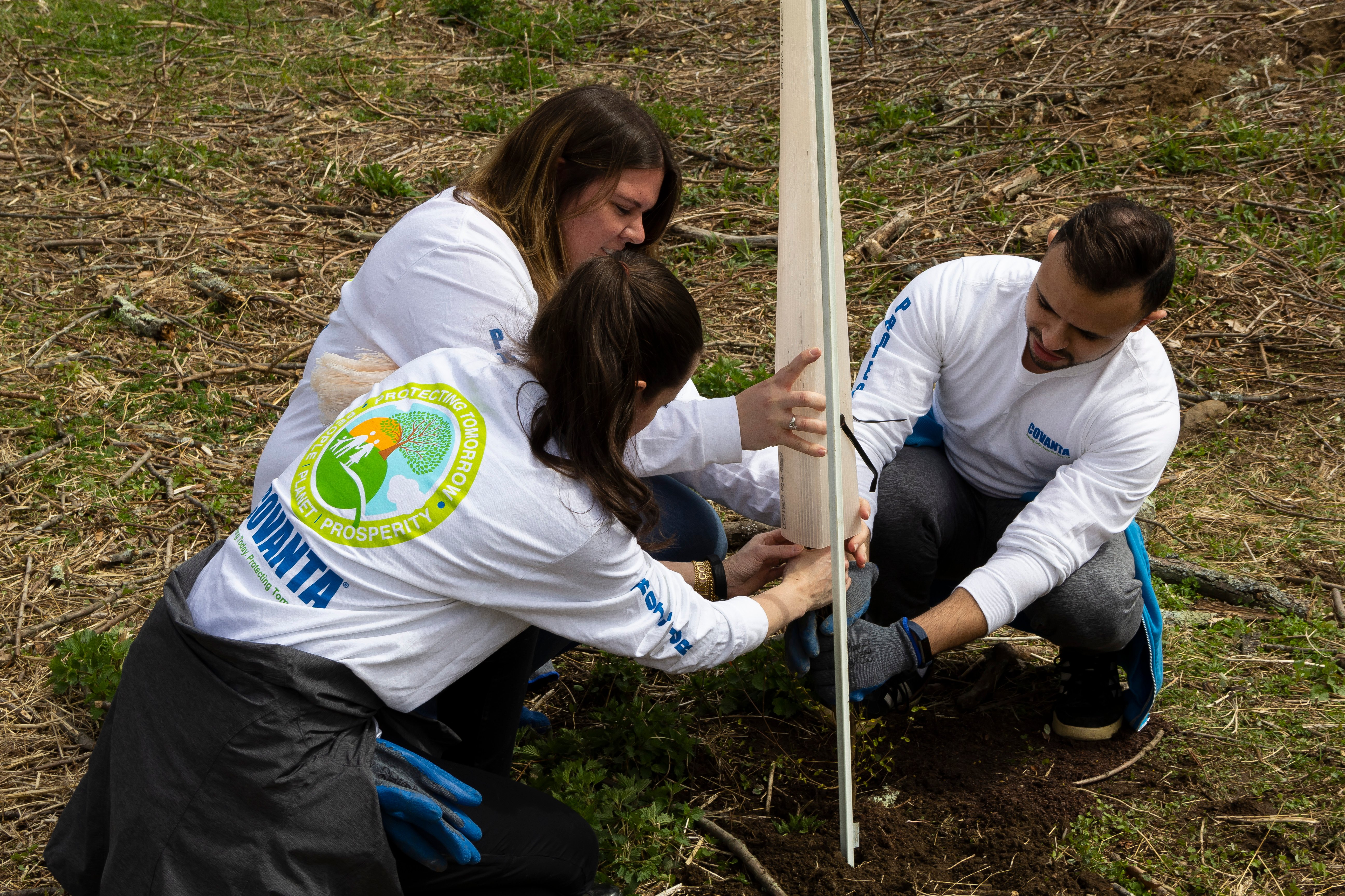 Covanta employees planting trees and flowers in a Morristown park